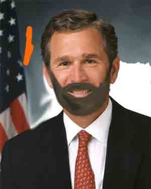 george W bush with a beard